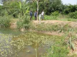 pisciculture 3