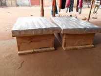 ruche africaine 1